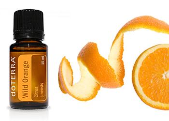 Praktijk Iridis Almere - AromaTouch Wild Orange